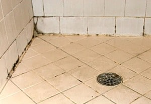 remove black mold on bathroom tile