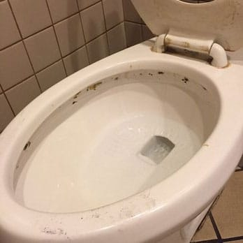Mold In Bathroom Harmful remove black mold from toilet bowl, tank and seat
