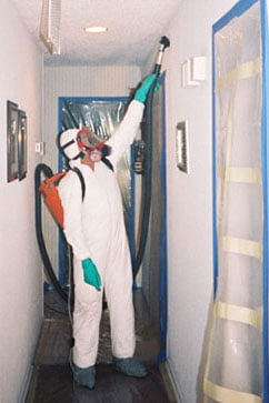 black mold remediation and cleanup