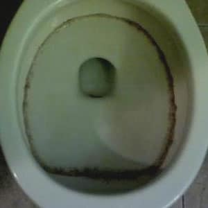 Remove Black Mold From Toilet Bowl, Tank and Seat