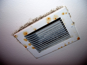 How To Remove Black Mold In Air Ducts And Vents