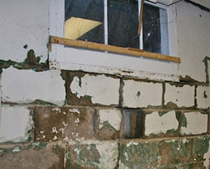 Removing Black Mold From Concrete Patio Basement Floor Or Wall