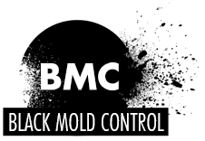 Black Mold Removal and Control