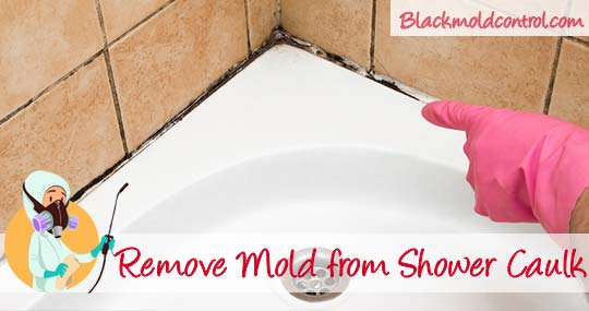 Remove Black Mold From Shower And Bathroom Caulk